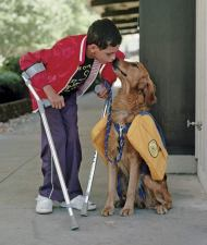Service Dog love