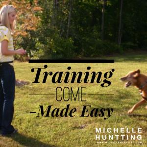 trainingcomemadeeasypic